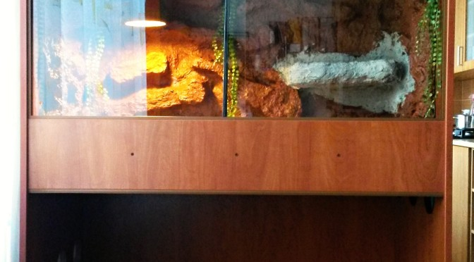 lamino-terarium-fullres