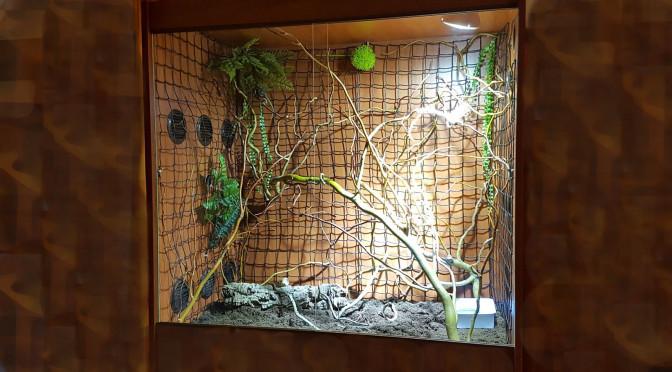 Terárium pro chameleona jemenského